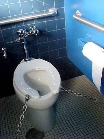 toilet-seat-down.JPG